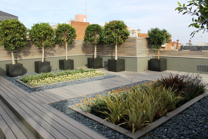 C mo construir un jard n en la terraza y un sorteo del - Imagenes de terrazas con plantas ...