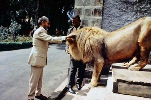 Bob Marley, Paix - Afrique - Liberté | Juralex Africa Comitas Gentium