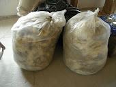 1) Tutto ha inizio da quando porto a casa la lana appena tosata