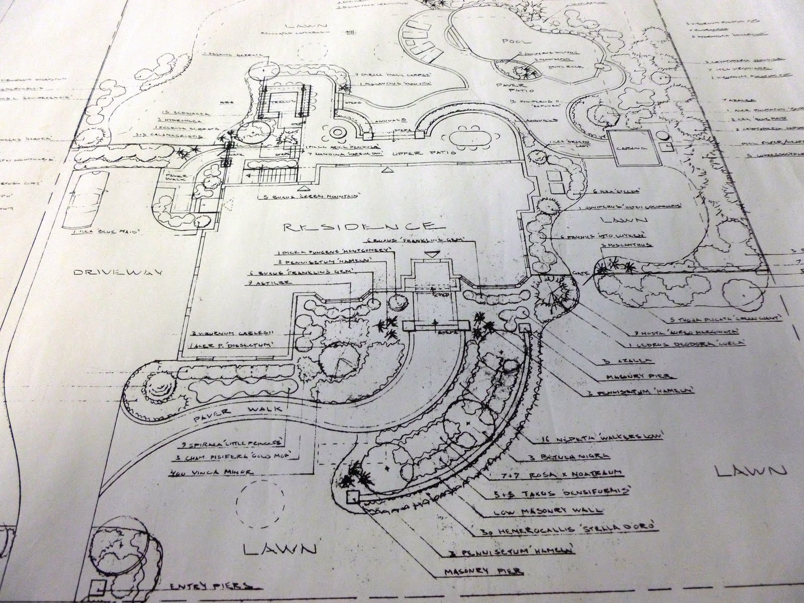 Oceanview Landscape Design Plans