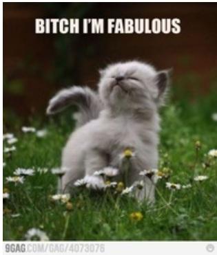 Fotos graciosas :3 Bitch+I'm+fabulous