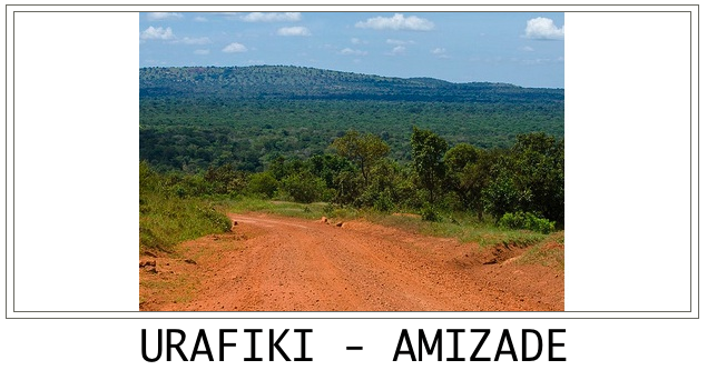 URAFIKI - AMIZADE