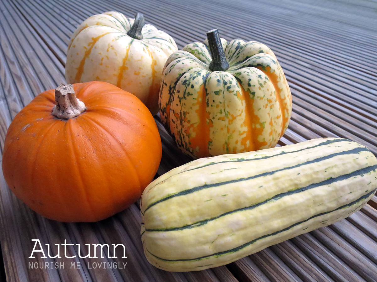 pumpkin_and_squash