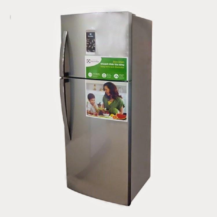 Tủ Lạnh Electrolux ETB2100PE-RVN (210 lít)