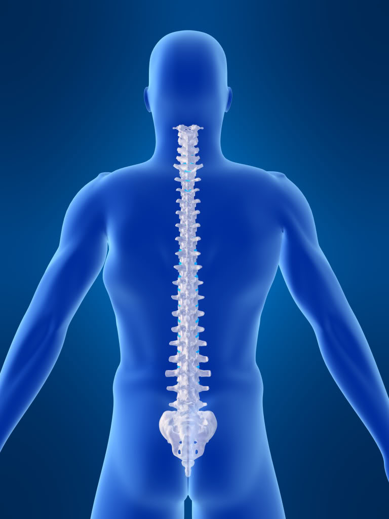 A Healthy Back is your local Chiropractor in Fayetteville serving all of your needs. Call us today at () for an appointment.