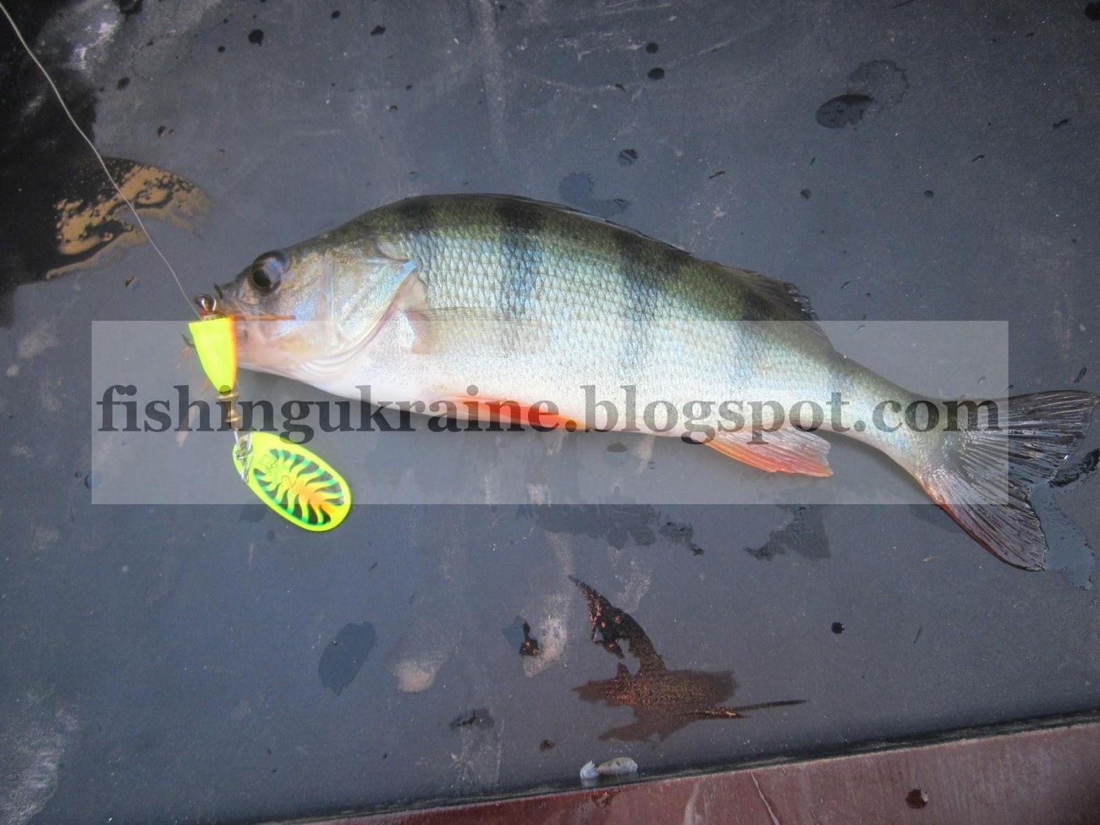 рыбалка на мепс