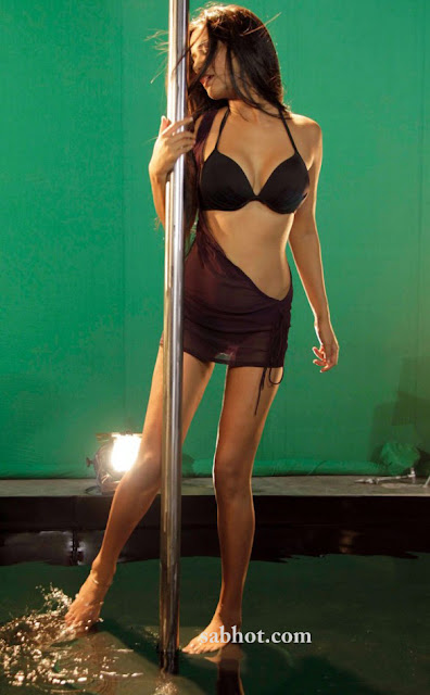 Poonam Pandey hot pole dance for Nasha