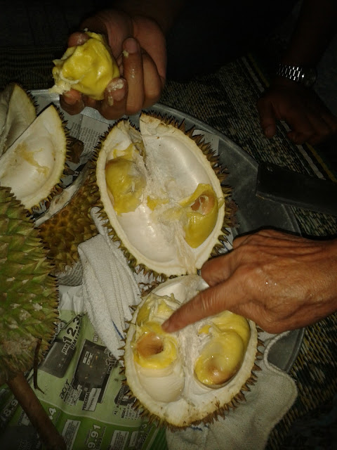 Balik Kampung & Durian