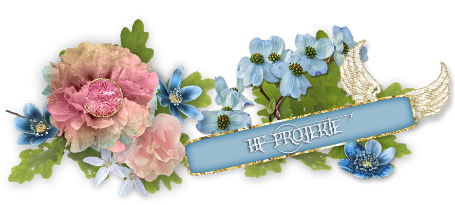HF-Projekte Scrapblog
