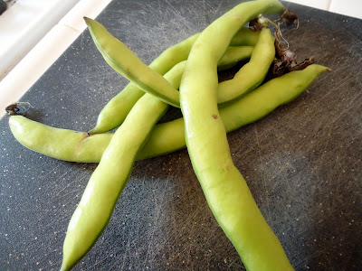 how to cook fresh shelled fava beans