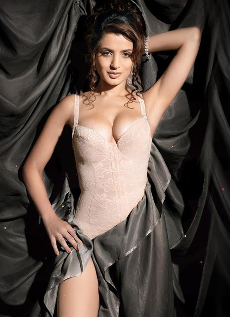 Amisha Patel Hot photos Navel Queens