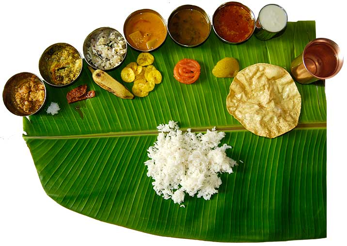 Indian cultures goal 3 staple foods of india for Andhra pradesh cuisine