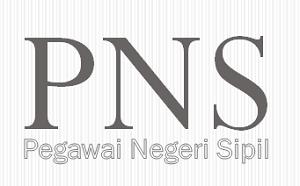 Cara Cek Data PNS di Situs BKN | Pastikan Data Anda Benar