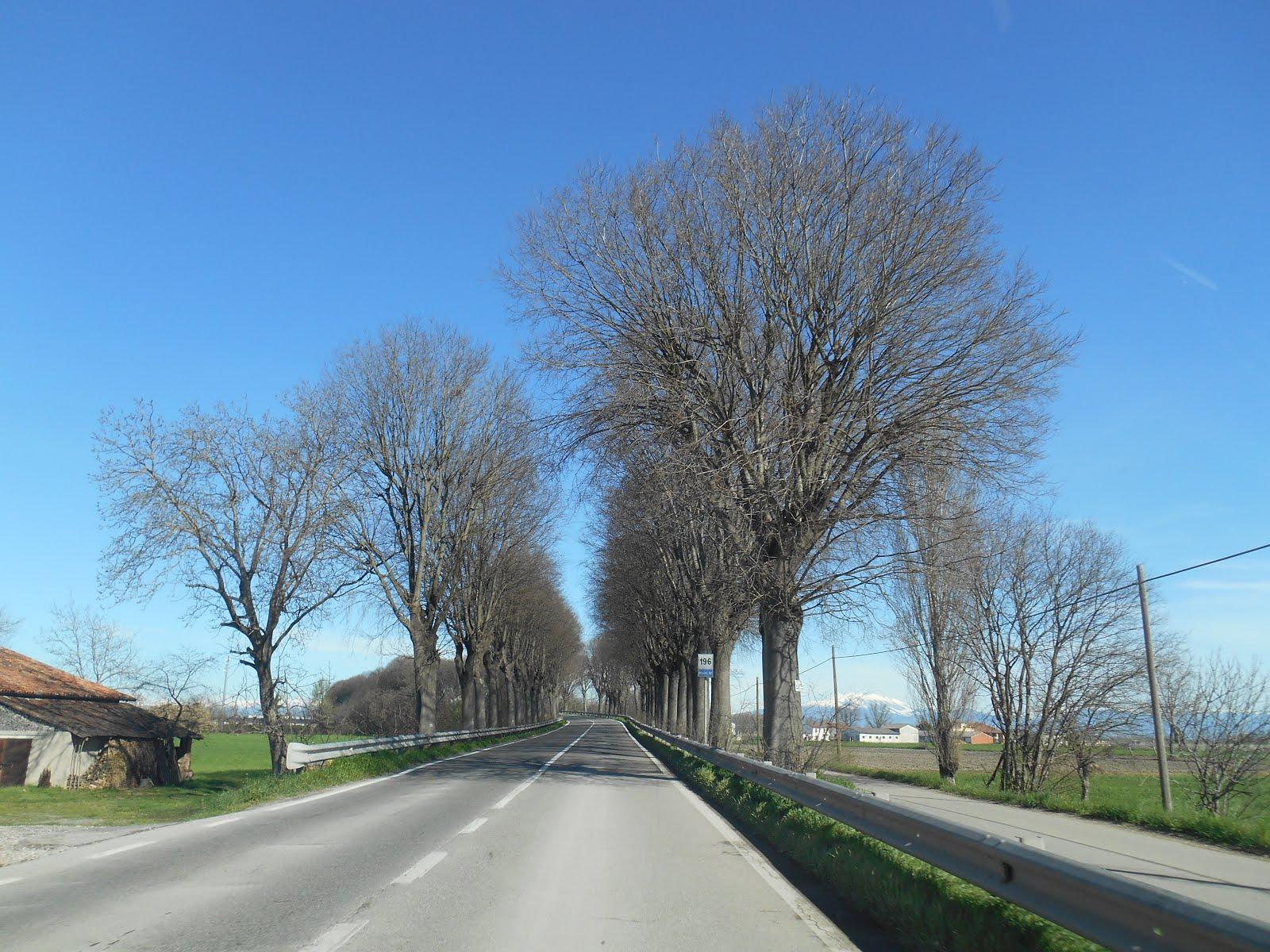 A caminho de San Benedetto Po, 2018