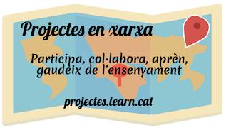Què són els projectes en xaxa?