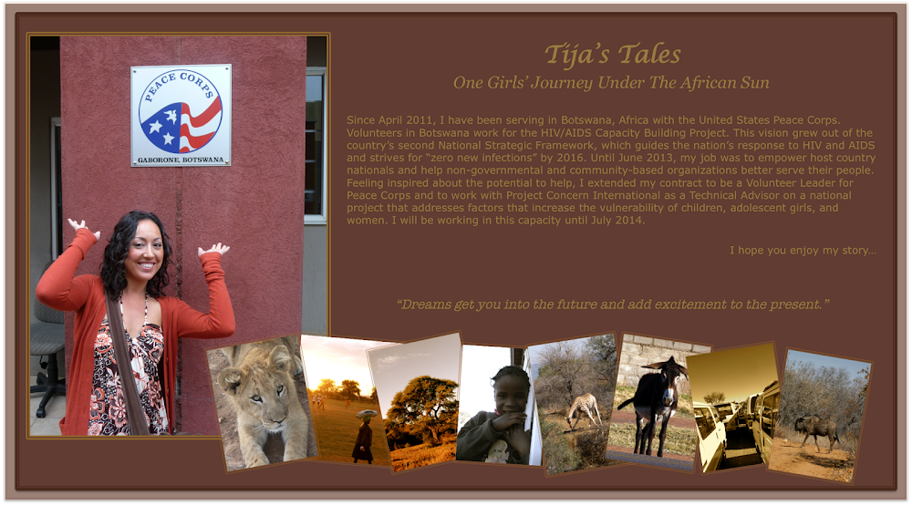 Tija's Tales: One Girls' Journey Under the African Sun