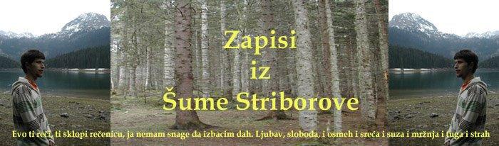 Zapisi iz Šume Striborove