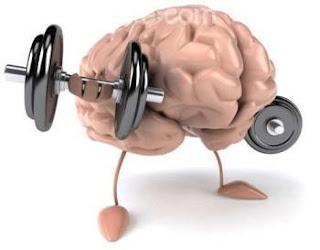 هل ترغب في ذاكرة قوية ؟ فقط استنشق الروائح التالية !