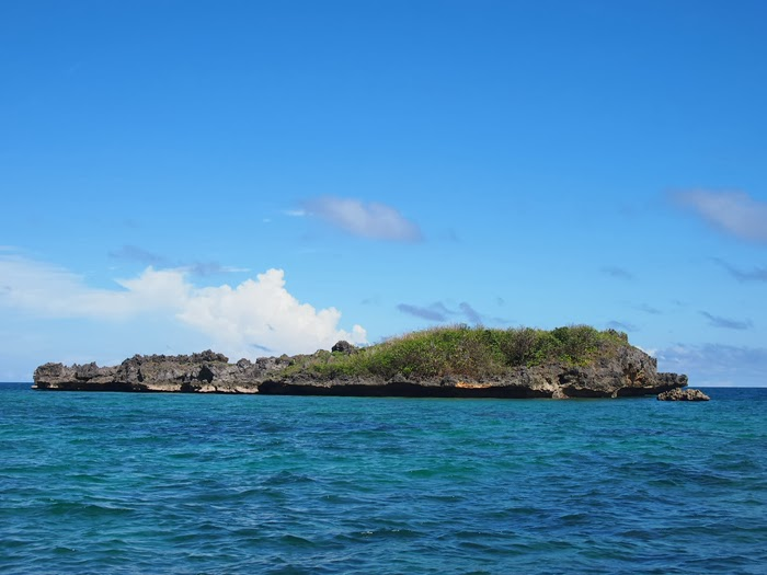 Boracay Crocodile Island