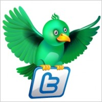 How To Add Twitter Flying Bird To Blogger