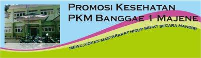 PROMKES PKM BANGGAE 1 MAJENE