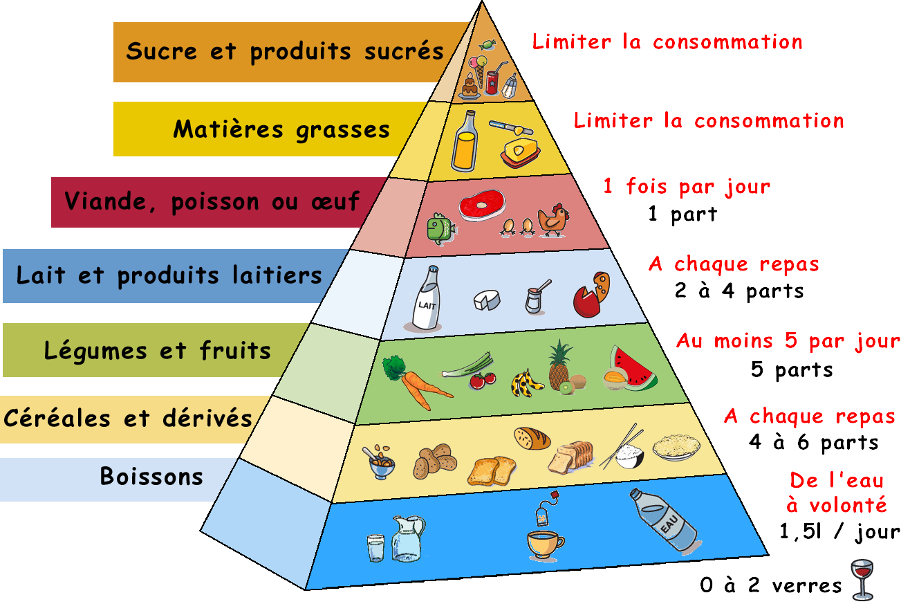 Sciences de la vie et de la terre huahine pyramide for Liste chaine canalsat grand panorama pdf