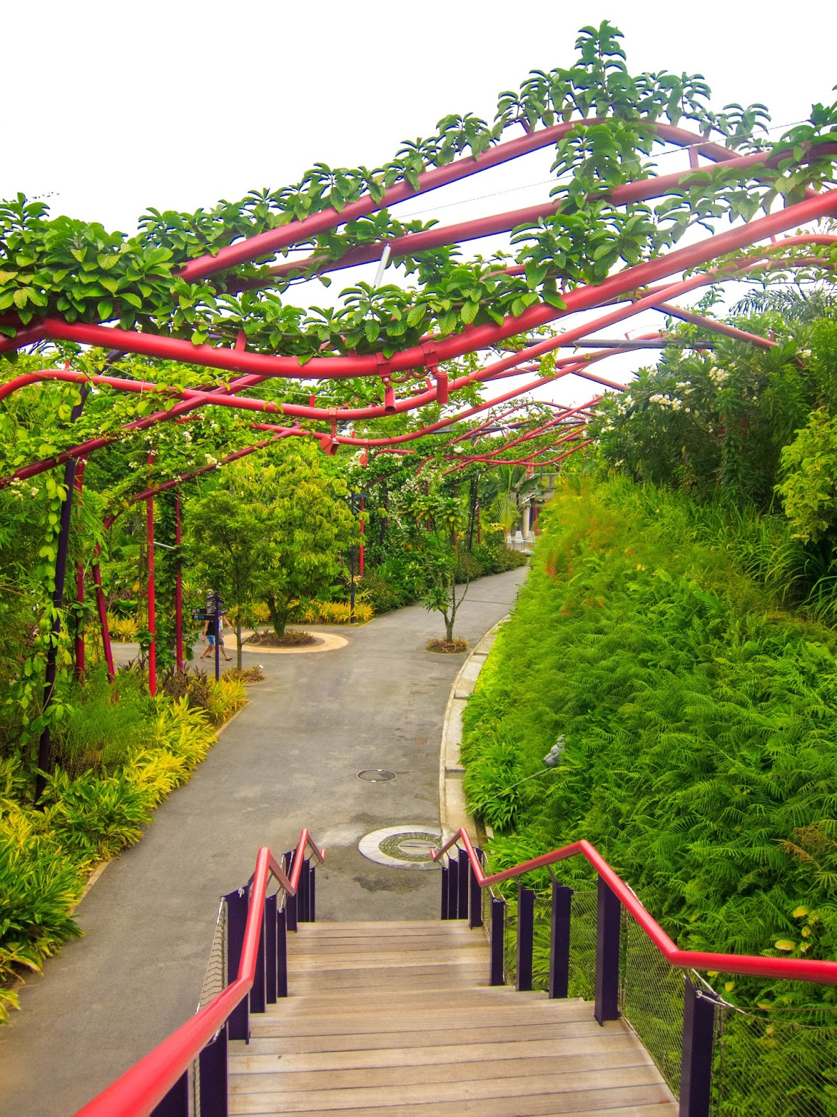Beautiful greenery in the Outdoor Gardens, Gardens by the Bay in Singapore | Svelte Salivations - Travel