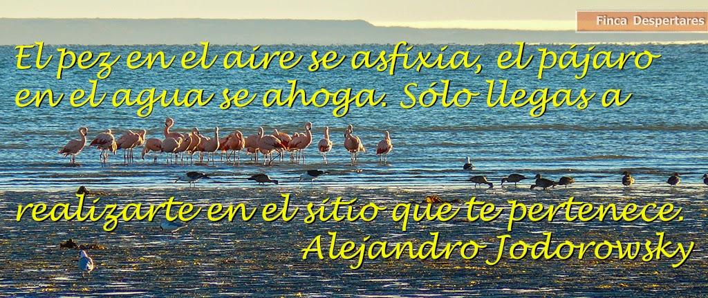 Finca Despertares - Alejandro Jodorowsky