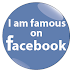 Ten Steps to Become Famous on Facebook