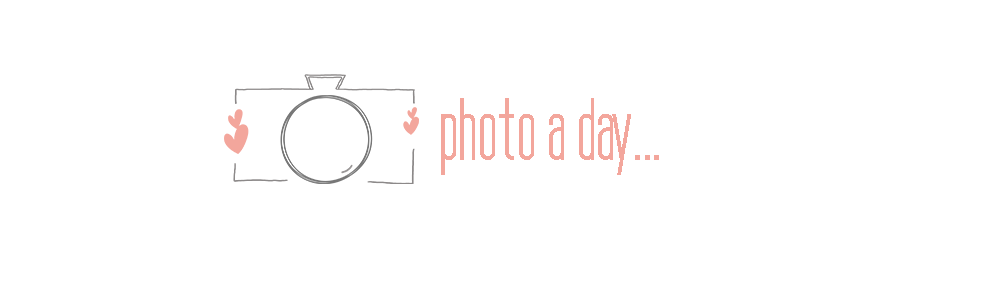 Photo a Day