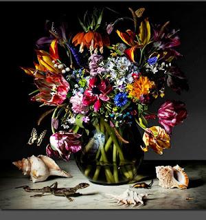 florales-naturalezas