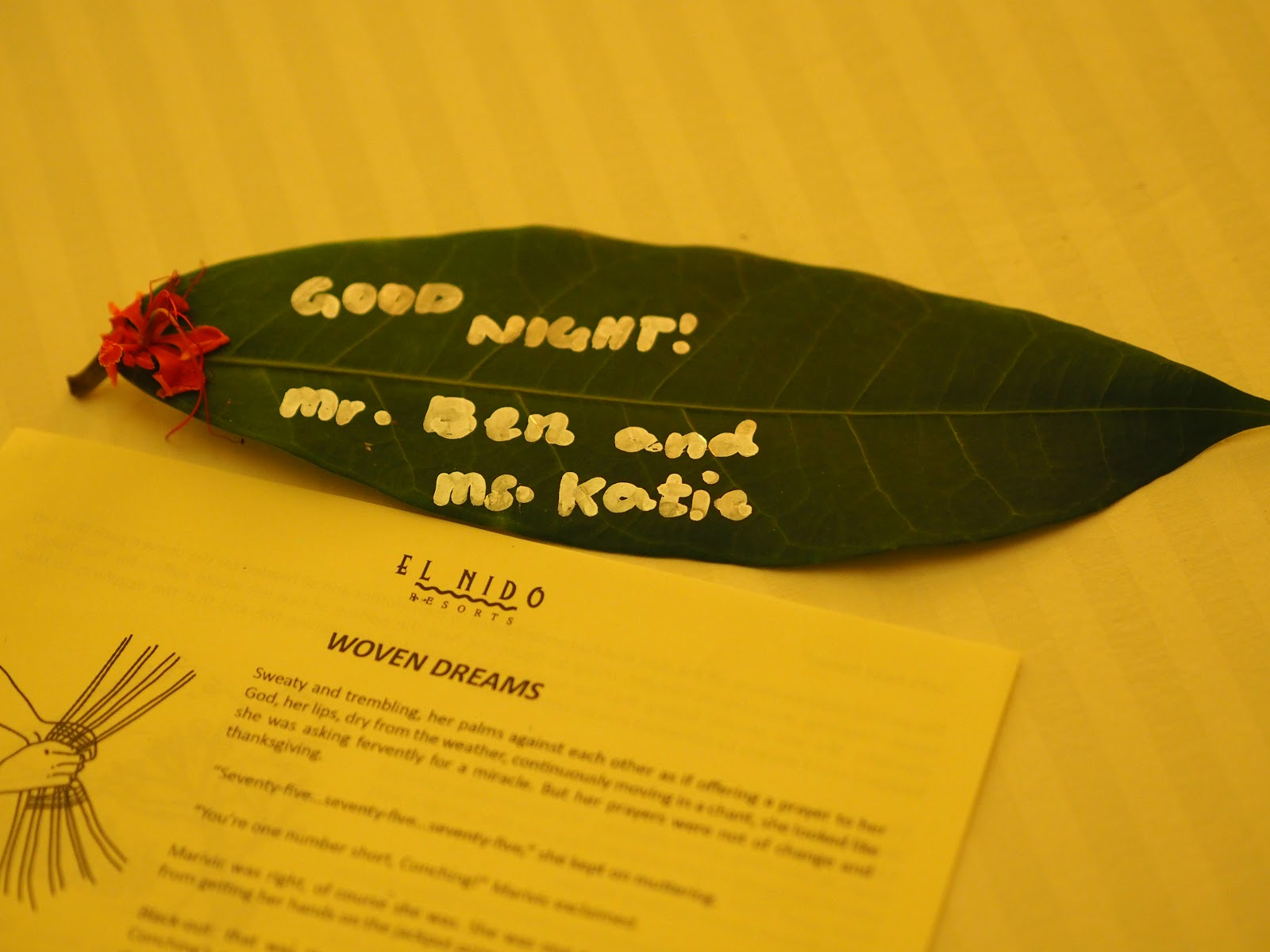 Bed time note, Miniloc Island, Philippines