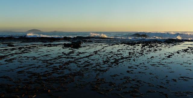 exotic relaxation sunshine coast a nooner