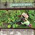Invitan a taller de agricultura en Cholul