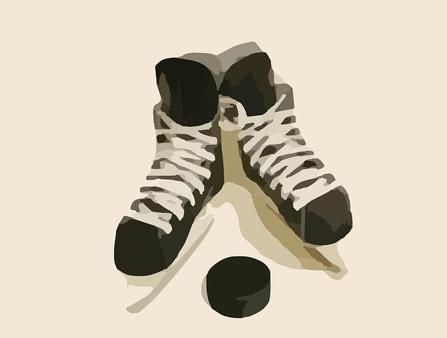Słówko na niedzielę: hockey sur glace cz. 1