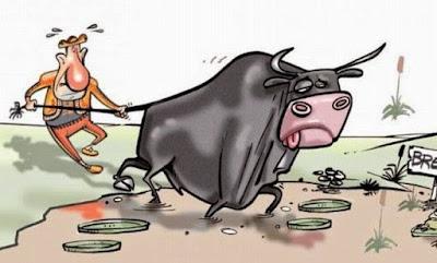 A vaca que observava o Shabat