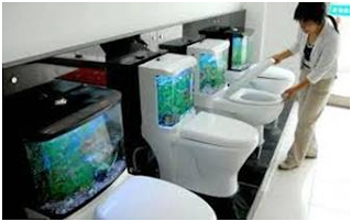 The fish tank toilet