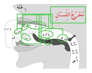 Belajar Membaca Al Qur'an