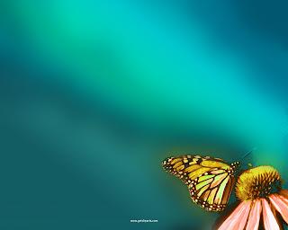 Background Power Point Kupu-kupu