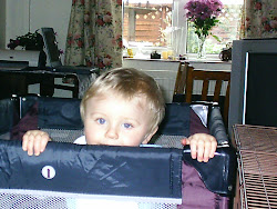 Edward in his Travel Cot