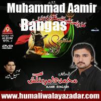 http://ishqehaider.blogspot.com/2013/11/muhammad-aamir-bangash-nohay-2014.html