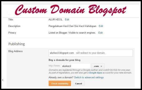 Kerugian dan Keuntungan Custom domain Blogspot