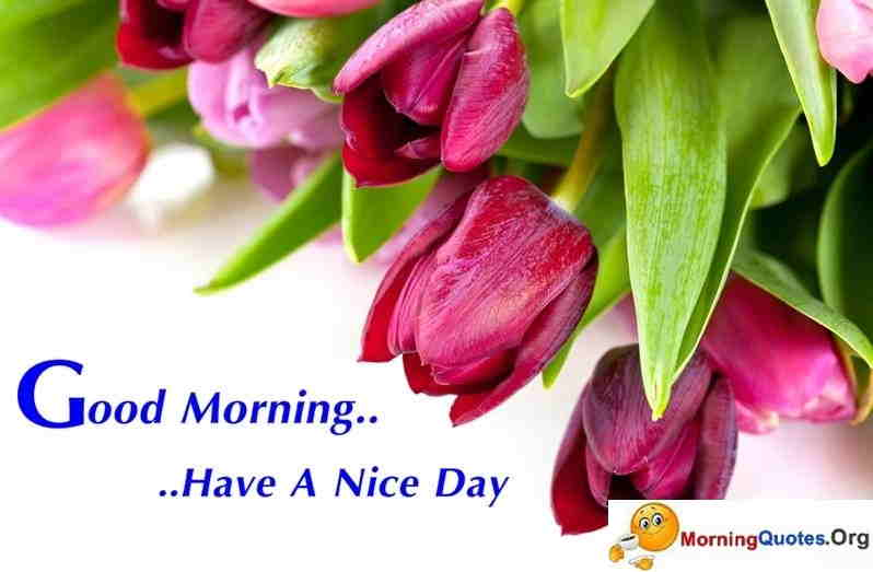 Good-Morning-SMS-Messages