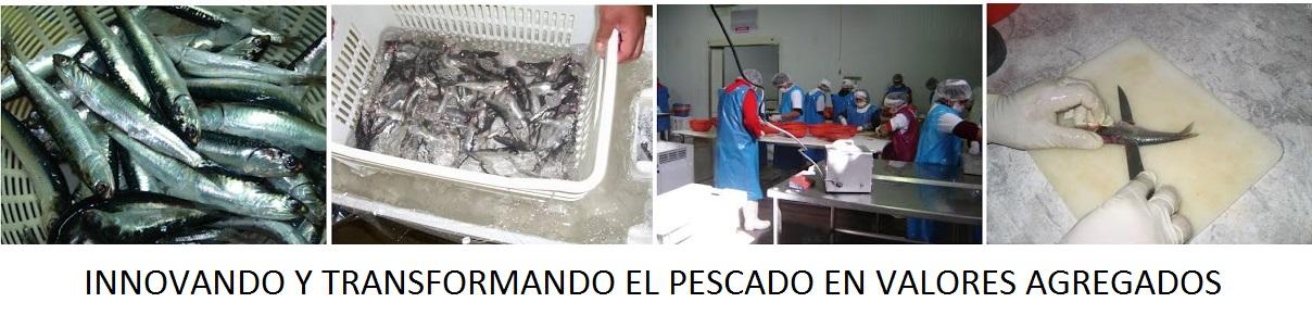 Innovando y transformando el pescado en valores agregados