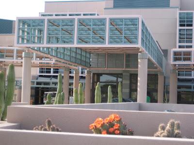 a cactus blooms in front of the Mayo Clinic Arizona