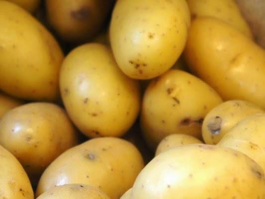 Le ministère du Commerce fixe les prix de vente de la pomme de terre