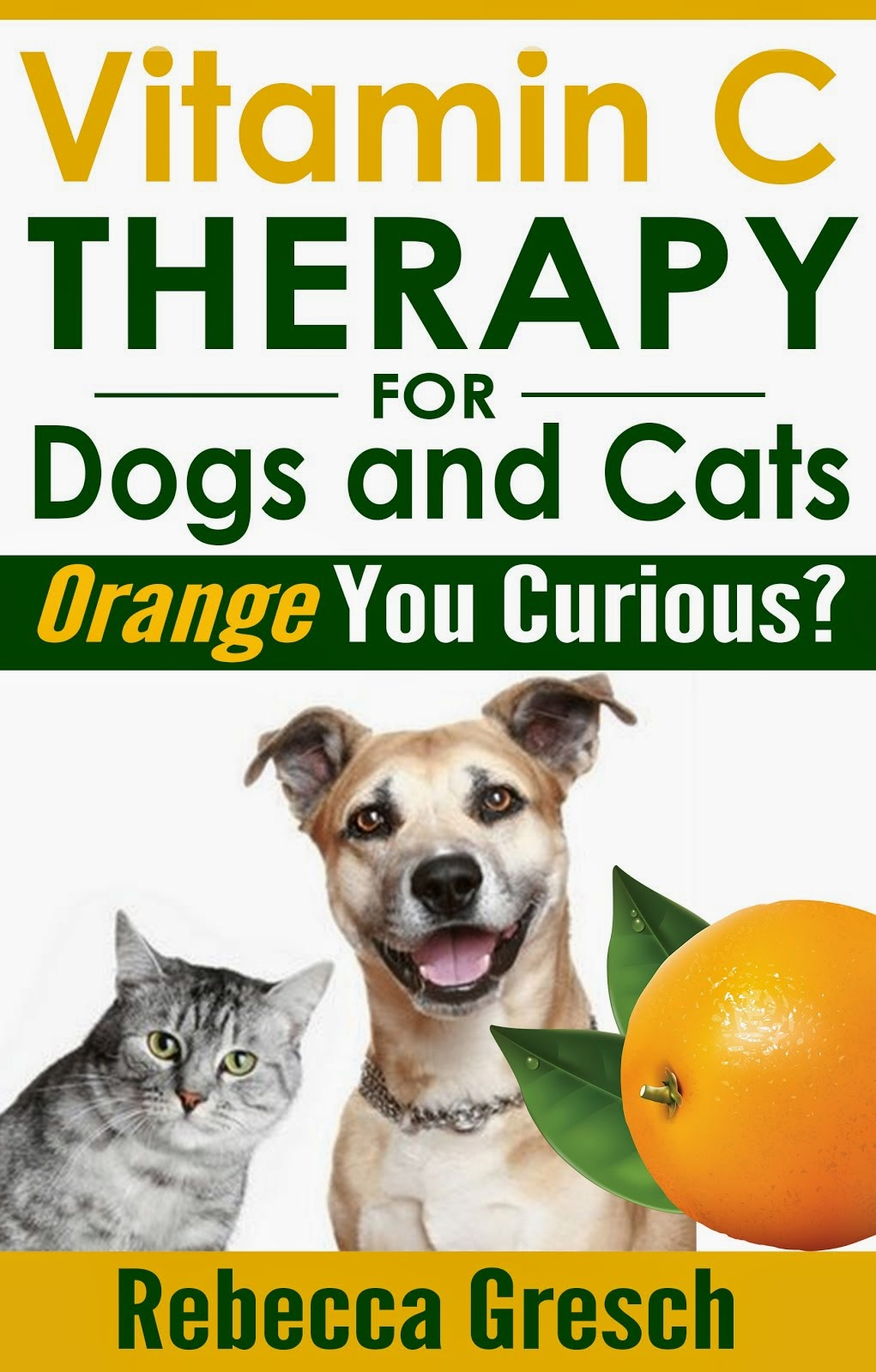 Vitamin C Therapy for Dogs and Cats