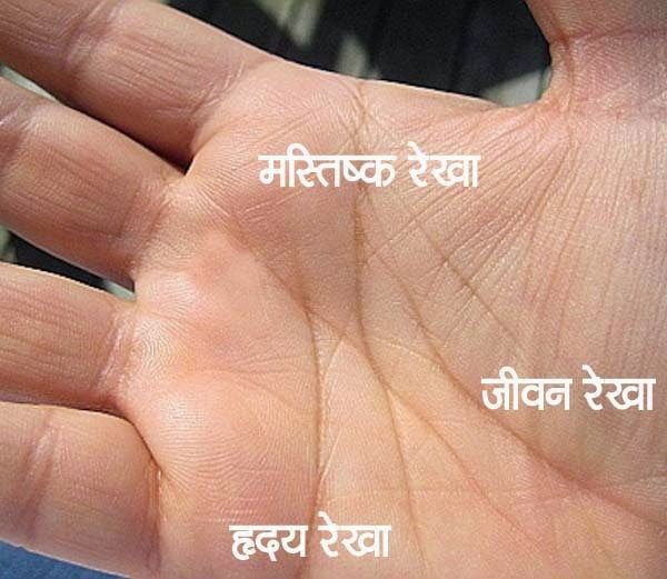 Hastrekha Shastra In Hindi With Images