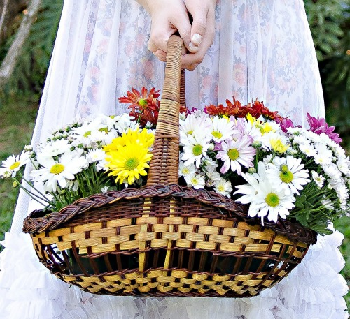 http://1.bp.blogspot.com/-NKA2txmfuvI/UHH5zwDO19I/AAAAAAAABKc/UfYc9UXkxtE/s1600/Po-de-Arroz124.jpg