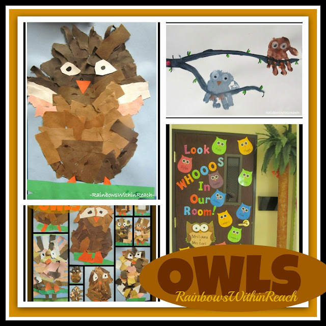 photo of: Owls in Kindergarten and Preschool Collage via RainbowsWithinReach